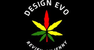 DesignEvo Review