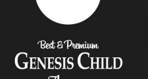 Best Genesis Child Themes